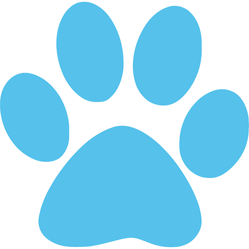 Dog walking pawprint icon